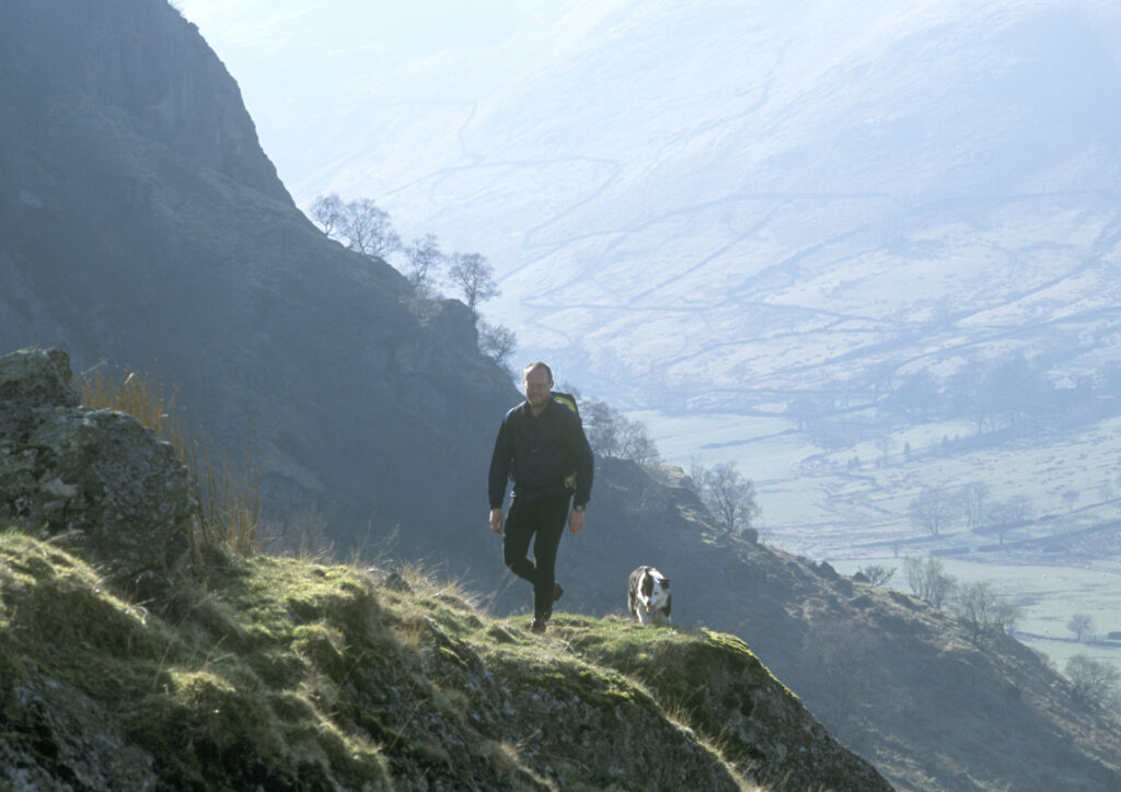 For the more adventurous, stunning dog walks